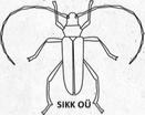 Sikk OÜ logo