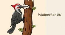 WUDPECKER OÜ logo