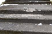 Trepp2.jpg