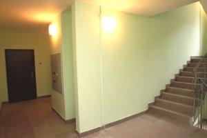 Trepp-rem (2).jpg