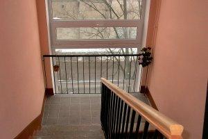Trepp-rem (3).jpg