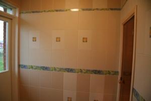 showr.jpg